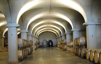 Maccari winery ageing room